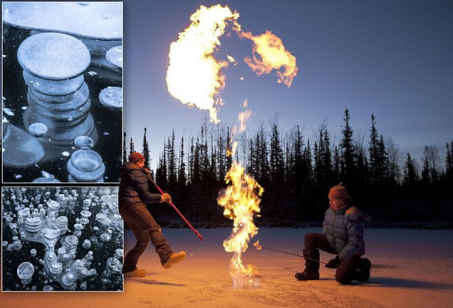 ekologai naikina metano bombas.