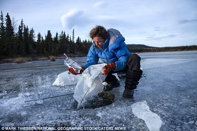 Ekologė matuoja burbule esančių metano dujų kiekį.