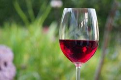 baltojo vyno širdies sveikata