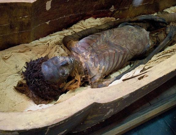 Photos Of Celebrities Dead Bodies Mumifikavimas