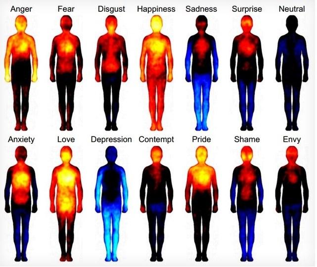 Ученые составили карту, показывающую, где мы чувствуем эмоцииSuomių tyrimas atskleidžia, kaip emocijos veikia mūsų kūną