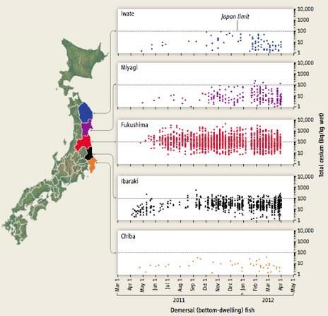 Cezio-134 kiekio kitimas dugninėse žuvyse Fukušimos apylinkėse.
