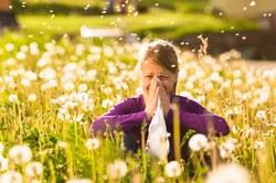 Alergija – šių laikų rykštė (Konkursinis straipsnis)